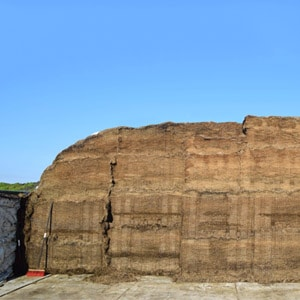 Referenzer Silage Safe